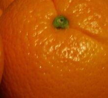 Open Orange Panel #3 of 3 (Please read description) by Stephen Thomas