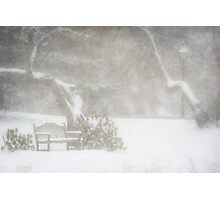 Snow still softly falling Photographic Print