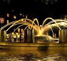 Liquid Gold Night Fountain - Charleston, SC by Kathy Baccari