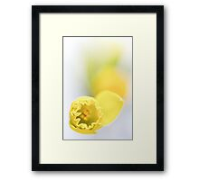 Soon it's spring ... Framed Print