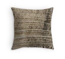 Sandy Striations  Throw Pillow