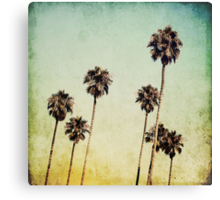 Palm Trees II Canvas Print