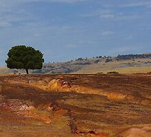 Erosion in the outback by myraj