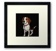 Puppy 2 Framed Print