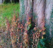 Fairy's Garden by LADeville
