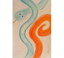 Doux serpent - Gentle snake Photographic Print