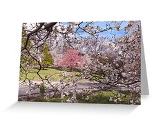 Dogwood Screen Greeting Card