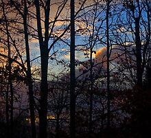Evening Sky by Otto Danby II