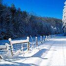 snowy delight by LoreLeft27