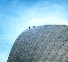 Man playing horn on top of Sydney Opera House by moreannthm