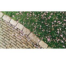 Spring mood Photographic Print