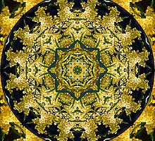 Golden Wattle Mandala by haymelter