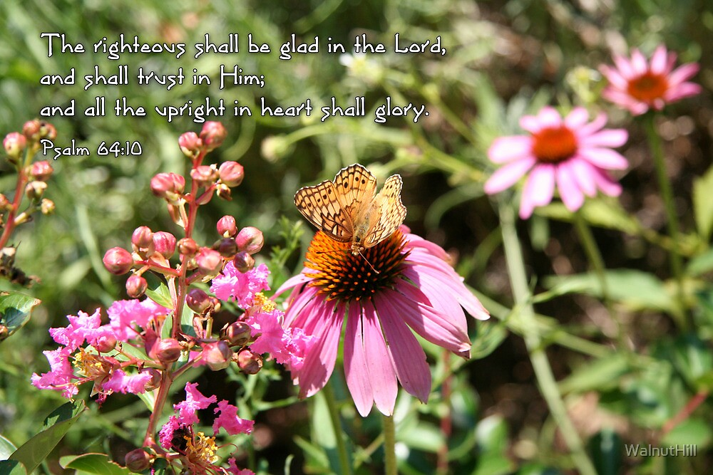 glad in the Lord by WalnutHill