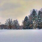 Winter Vista by Bill Wetmore