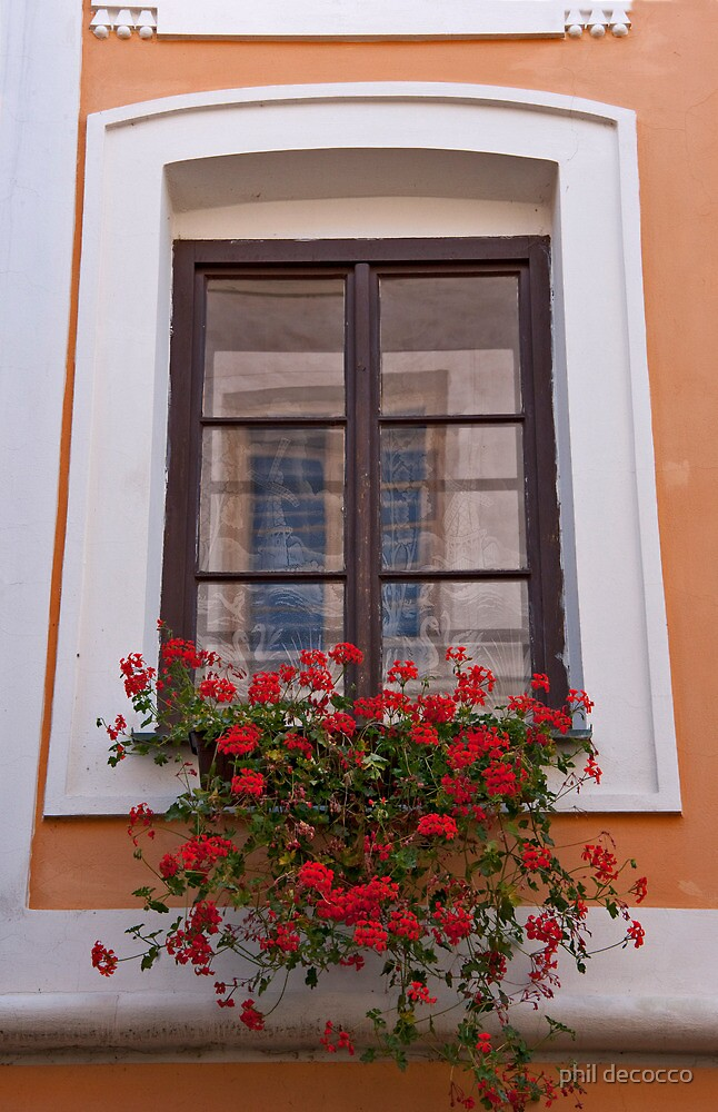 Window Full Of Geraniums by phil decocco