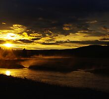 Madison River in first morning light with elks by Claudio Del Luongo
