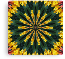 A Fanfare of Gaillardia Flowers Canvas Print