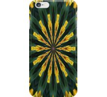 A Fanfare of Gaillardia Flowers iPhone Case/Skin