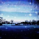 Winter's Magic © by Dawn M. Becker