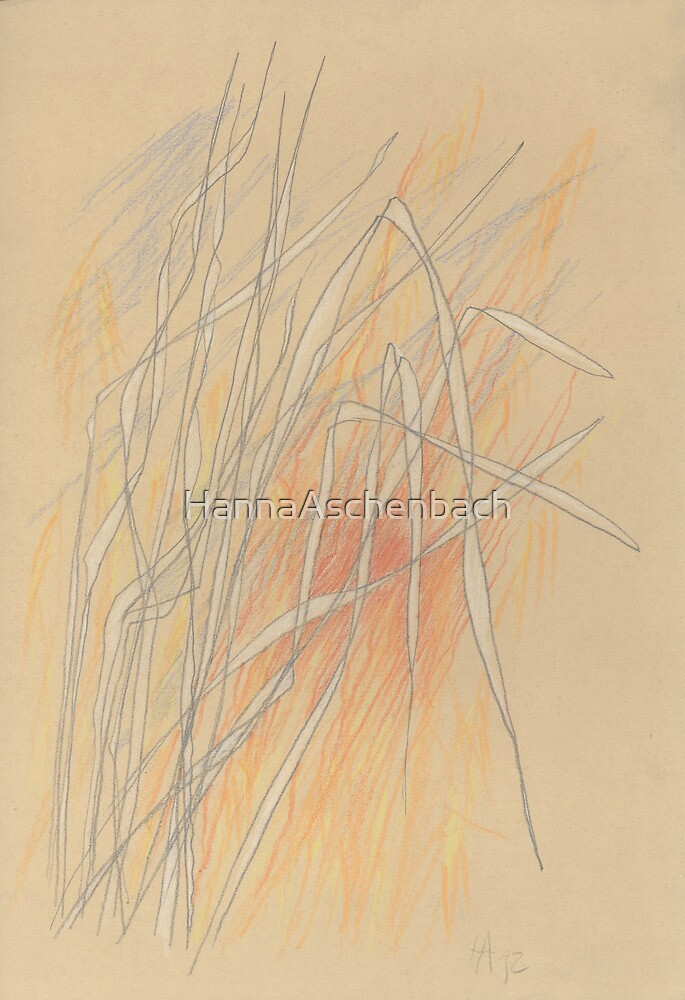 Bewegung im Licht by HannaAschenbach