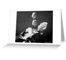 Black & White Flower Decor Greeting Card