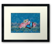 Morpho Magic Framed Print