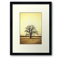 Solo Tree Framed Print