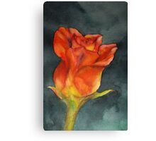 Sunshine & Roses Canvas Print