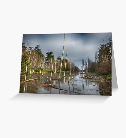 The Swamp on Cabbage Island Greeting Card