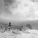 Snow gate by HAPhotography