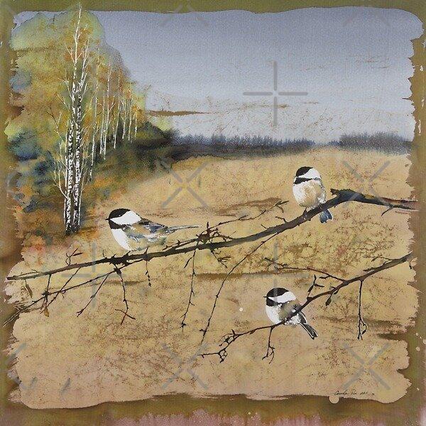 3 Chickadees and a row of Birch by carolyndoe