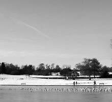St Albans Winterscape by berndt2