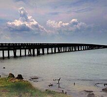 bridge under troubled skies by George Salazar