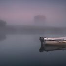 Misty Morning at Threave Castle by Brian Kerr