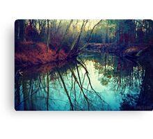 The Darkened Stream Canvas Print