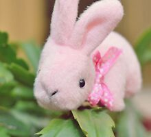 Bunny Collection #12 - bunny on a christmas cactus by Cyndy Ejanda