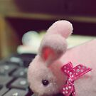 Bunny Collection #5 - a bunny on a keyboard by Cyndiee Ejanda