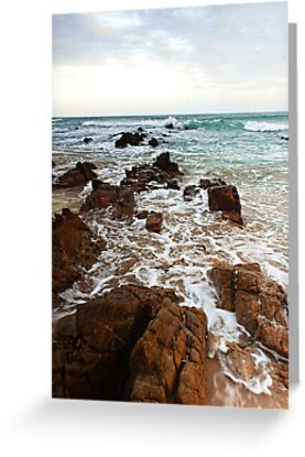 The Rugged Port Alfred Rocks by Warren. A. Williams