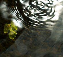 Beneath the ripples by ThomsonStudios
