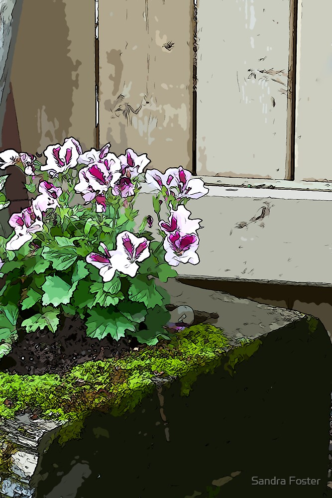 Geranium In Mossy Wood Planter - Digital Art  by Sandra Foster