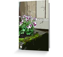 Geranium In Mossy Wood Planter - Digital Art  Greeting Card