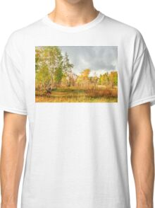 Birch on the edge of the forest Classic T-Shirt