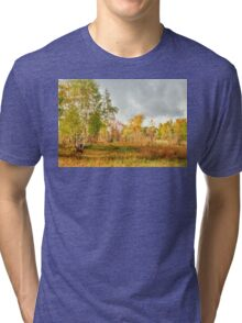 Birch on the edge of the forest Tri-blend T-Shirt