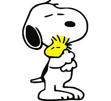 snoopy&woodstock Photographic Print