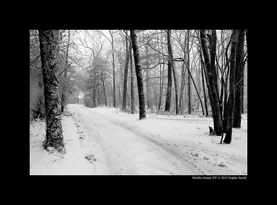 Dirt Road Covered With Snow - Middle Island, New York  by © Sophie W. Smith