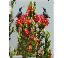 Ƹ̴Ӂ̴Ʒ BIRDS IPAD CASE Ƹ̴Ӂ̴Ʒ iPad Case/Skin