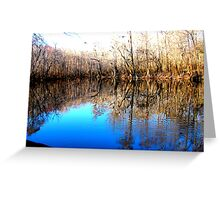collins lake in Feb 2 Greeting Card