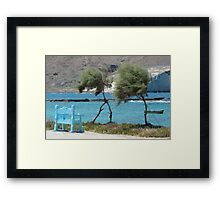 Trees blown by the wind Framed Print