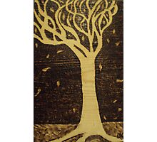 Modern Tree Pyrography Photographic Print