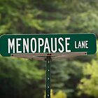 Menopause Lane by Sue Smith